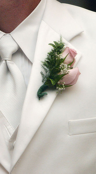 Tips for Northwest GA Grooms
